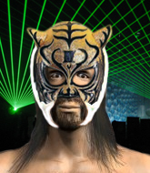 Mixed Martial Arts Fighter - Tiger Mask