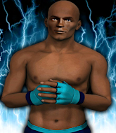 Mixed Martial Arts Fighter - Lamont  Banner