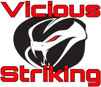 Vicious Striking - Mixed Martial Arts Gym, Los Angeles