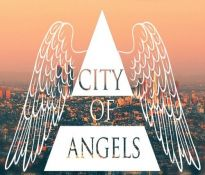 City of Angels Fight Academy - Mixed Martial Arts Gym, Los Angeles