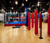 Physical Gym($50) - Mixed Martial Arts Gym, London