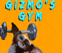 Gizmo's Gym - Mixed Martial Arts Gym, The Island