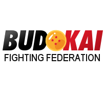 Budokai Fighting Federation (330k+)